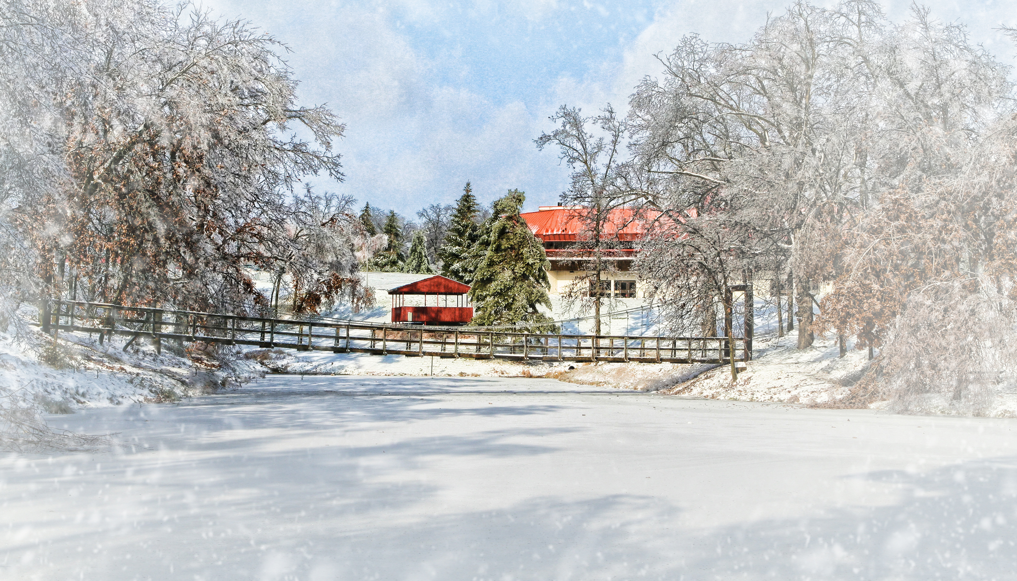 Winter Campus Cover